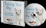 Thumbnail Training  Your Dog MRR