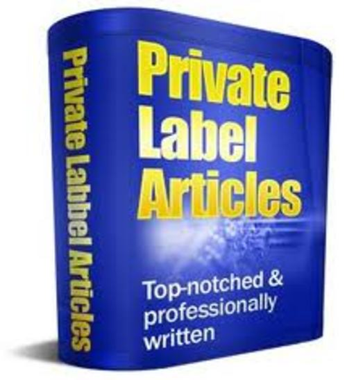 Product picture 11000 Article Pack plr
